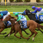 What not to do when horse betting online